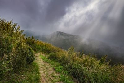 A peaceful hiking trail atop Seven Star Mountain in Yangmingshan National Park, Taiwan.