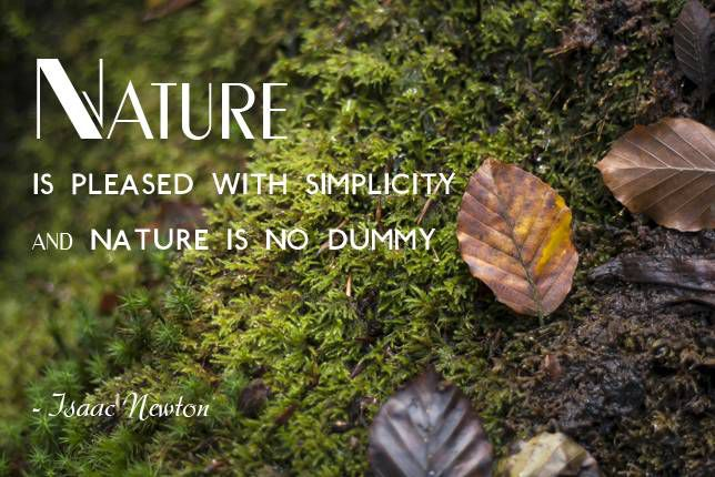 Nature is pleased with simplicity. And nature is no dummy. Isaac Newton