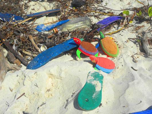 turtles and flip flops on beach