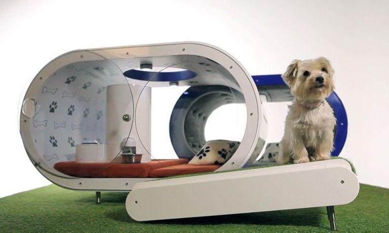 Samsung presenta Smart Home para perros