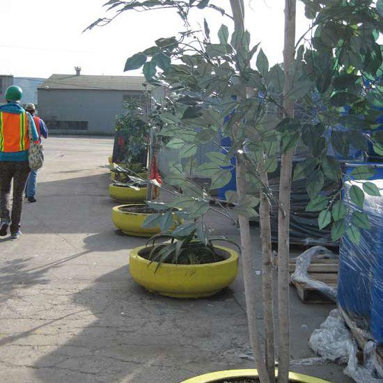 Plastic trees along a walk way at the waste facility.