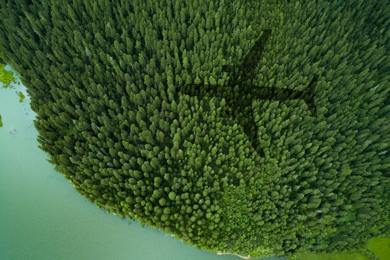 Shadow of airplane over forest and a lake.