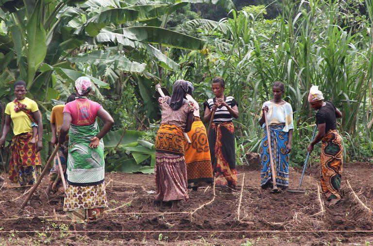 El Premio Lush Spring Celebra la Regeneración Social y Ambiental