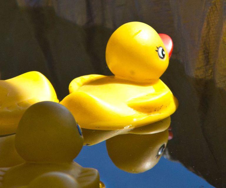 Sigue al pato de goma para ver cómo el plástico viaja por el mar