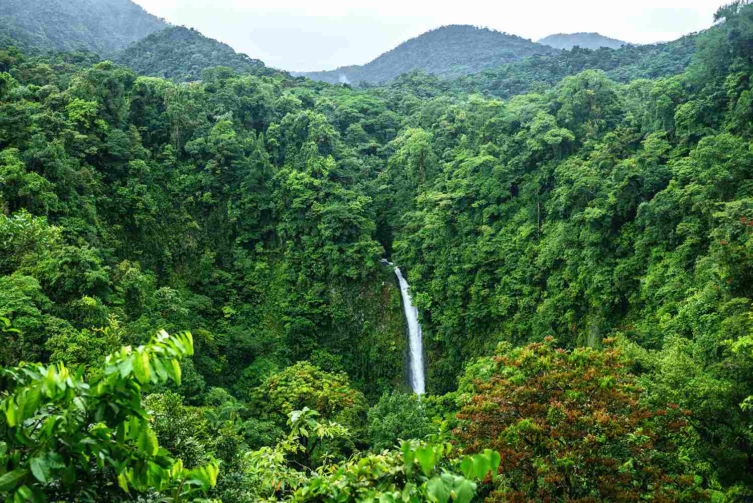 Costa Rica, Arenal Volcano National Park With the Waterfall of La Fortuna