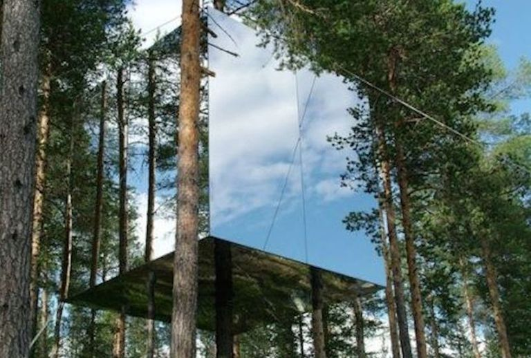 Mirrored treehouse in a forest