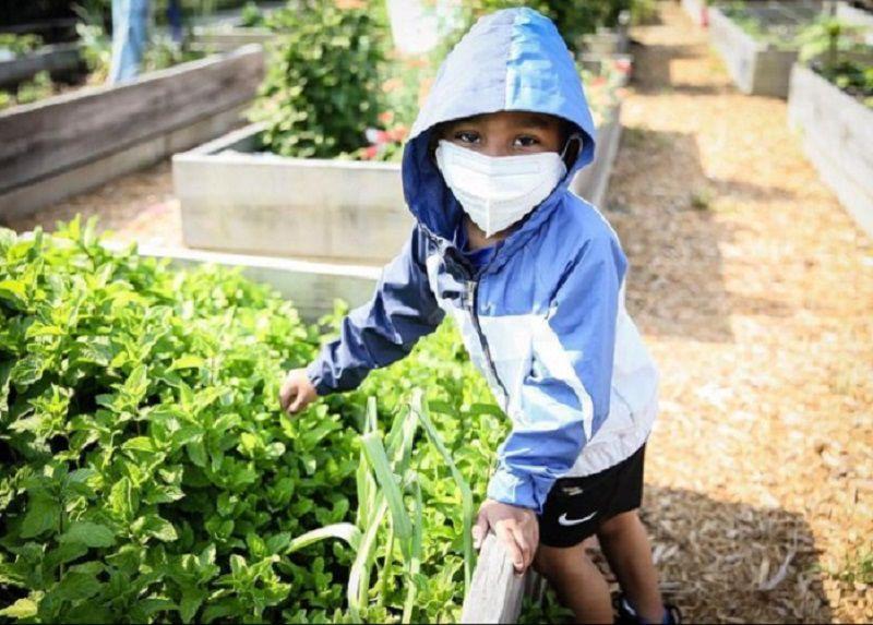 child in garden with herbs