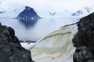 A view of green snow in the Antarctic Peninsula.