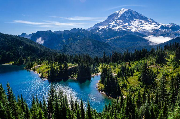 Parque Nacional Monte Rainier: Guía del usuario