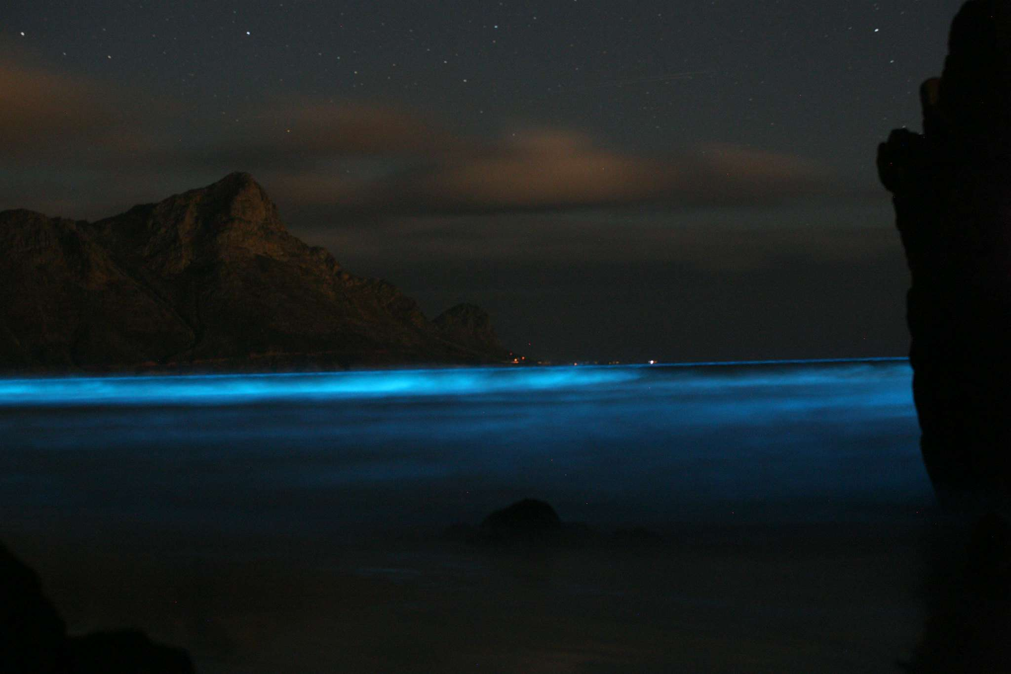 blue water from bioluminescence