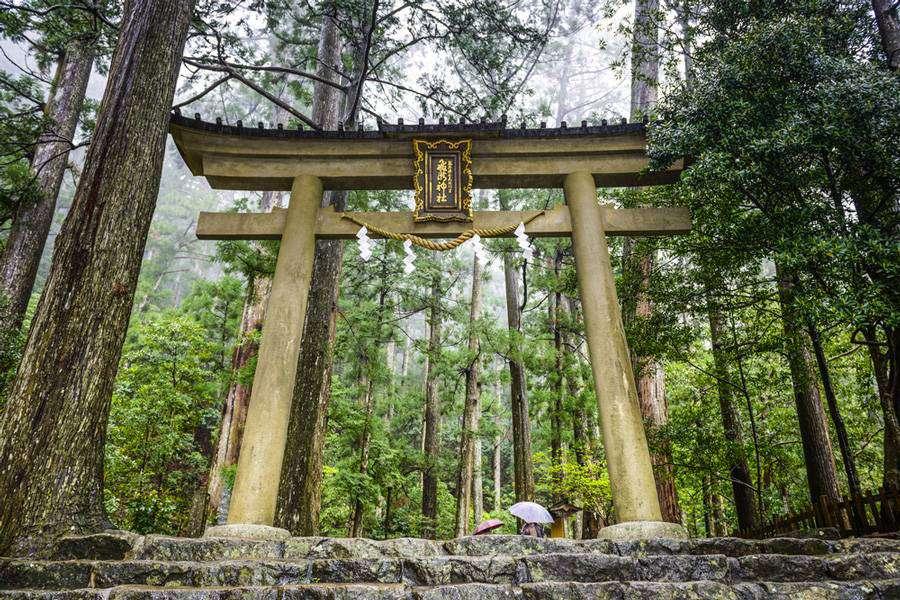 Torii gate on the Kumano Kodo Sacred Trail