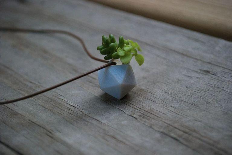 Los maceteros portátiles convierten plantas vivas en joyas