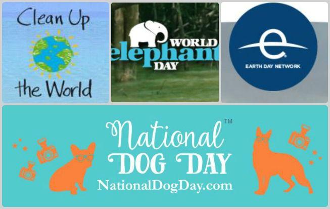 Logos of various national and international eco-holidays