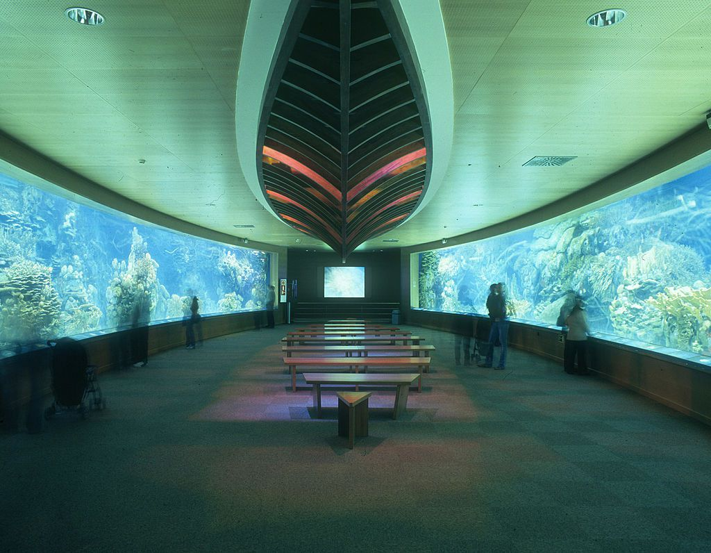 A large room at L'Oceanografic with aquarium tanks on both sides filled with fish and underwater plants