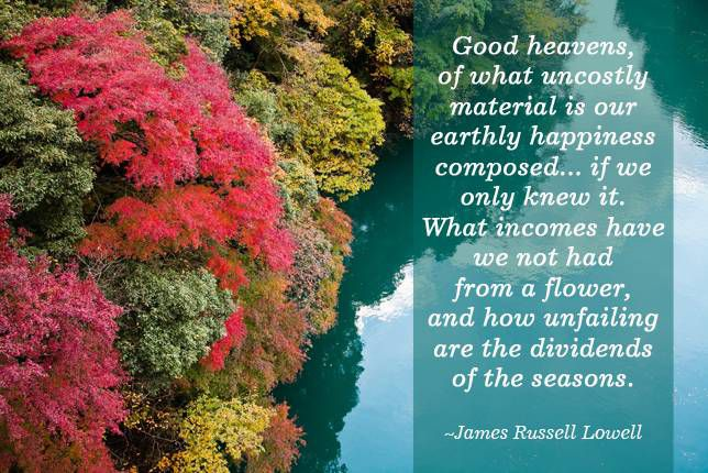 Good heavens, of what uncostly material is our earthly happiness composed... if we only knew it. What incomes have we not had from a flower, and how unfailing are the dividends of the seasons. James Russell Lowell