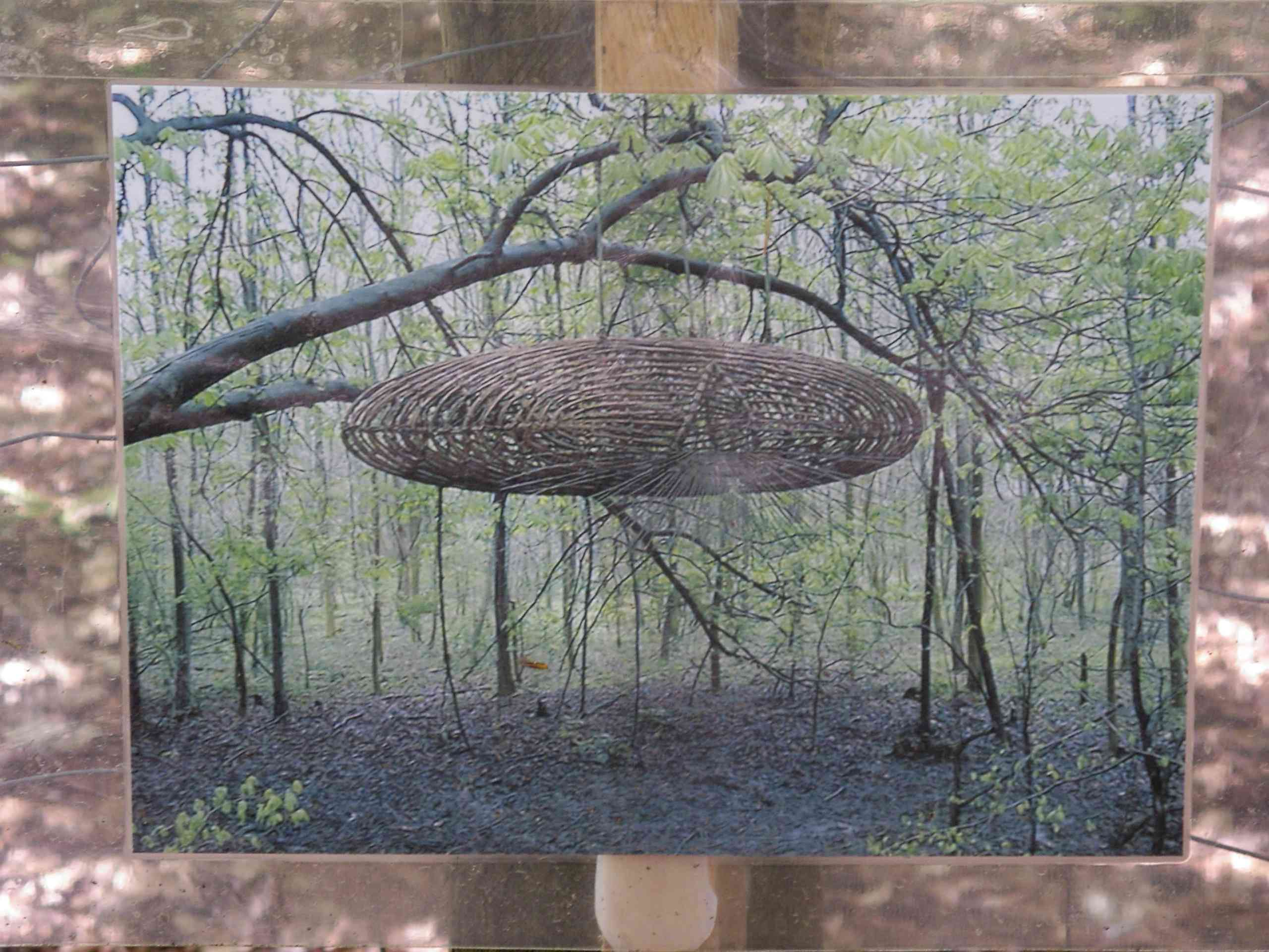 Photograph of artwork showing a pod of woven branches hanging in a forest