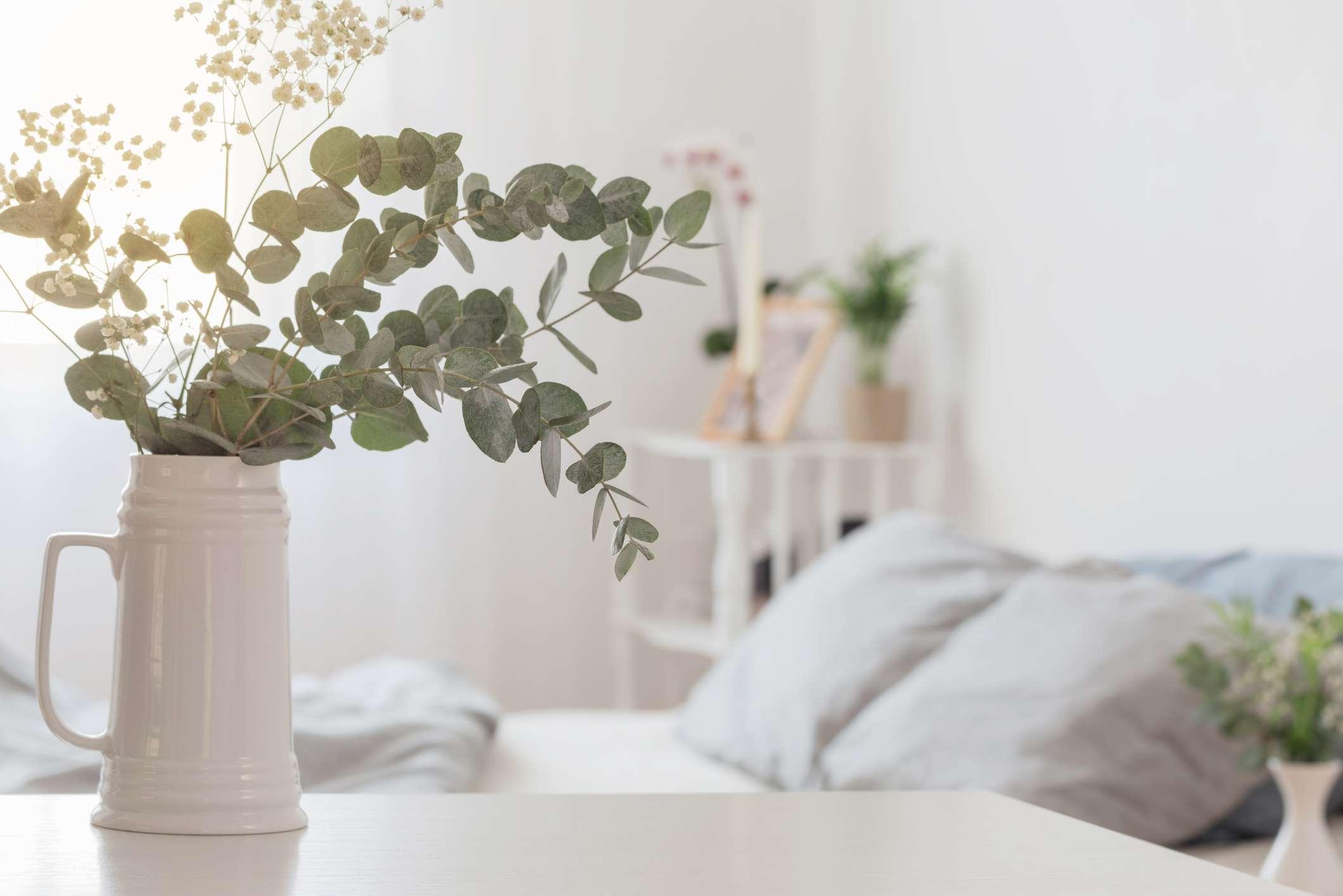Vase with eucalyptus leaves in bedroom