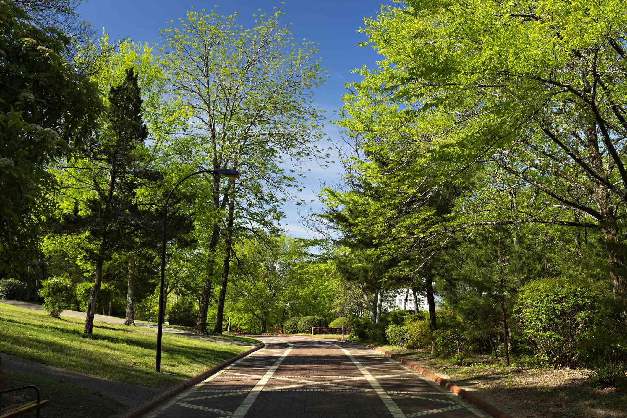 Grand Promenade in Hot Springs National Park in Arkansas