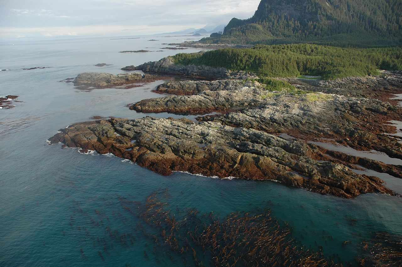 View of rocky, eroding coastline from Cape Spencer