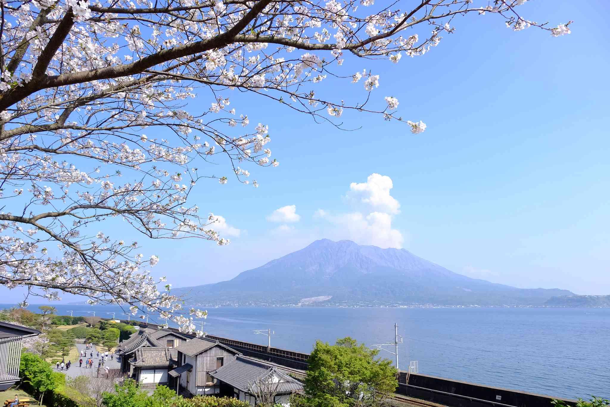 Sakurajima volcano in Japan