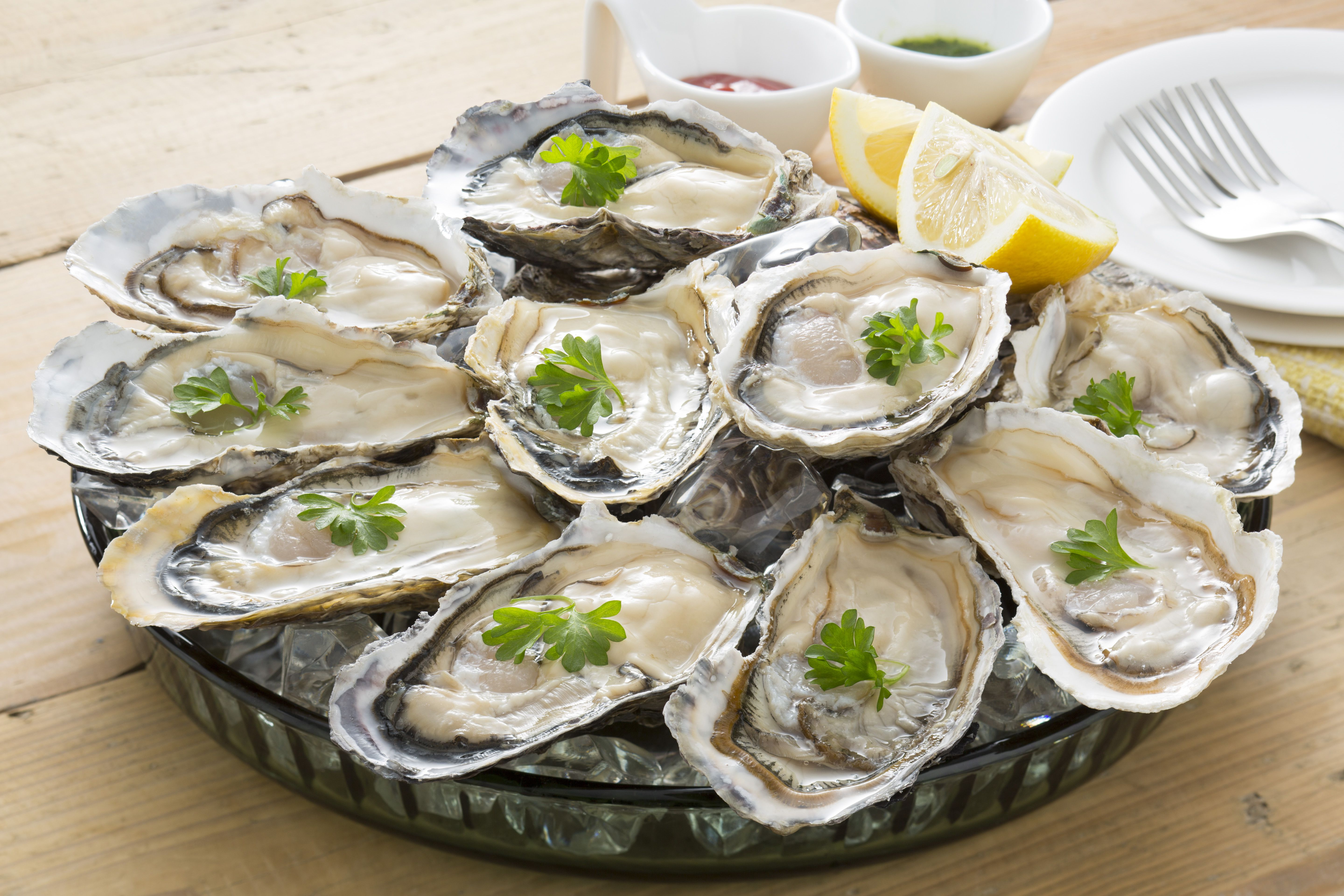 Everything You Ever Wanted to Know About Oysters