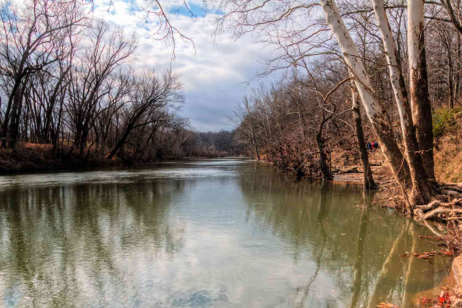 Tennessee's Duck River on a cloudy winter day