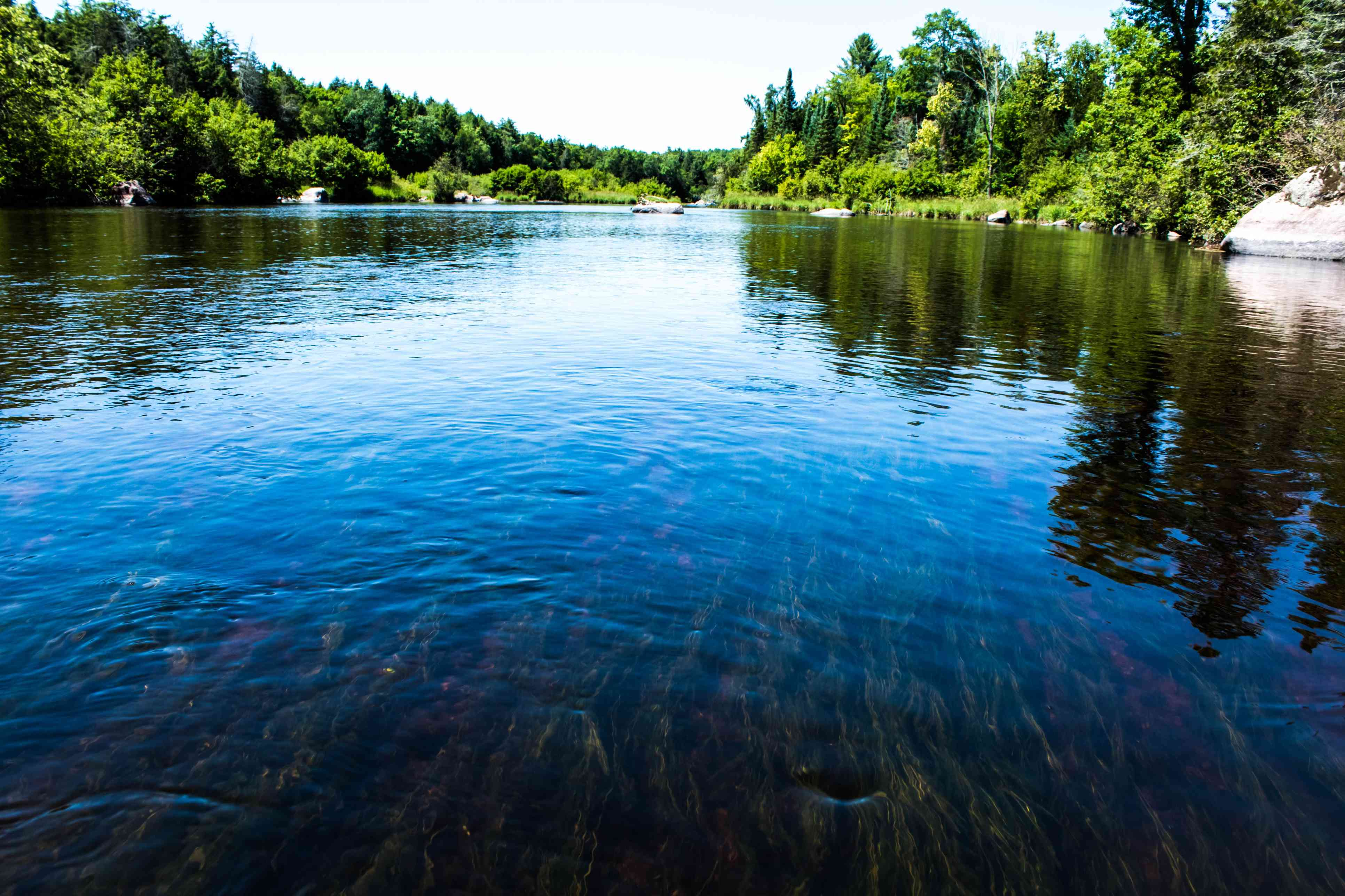 Beautiful Landscape On The Wolf River With Rocks And River weed , Wisconsin
