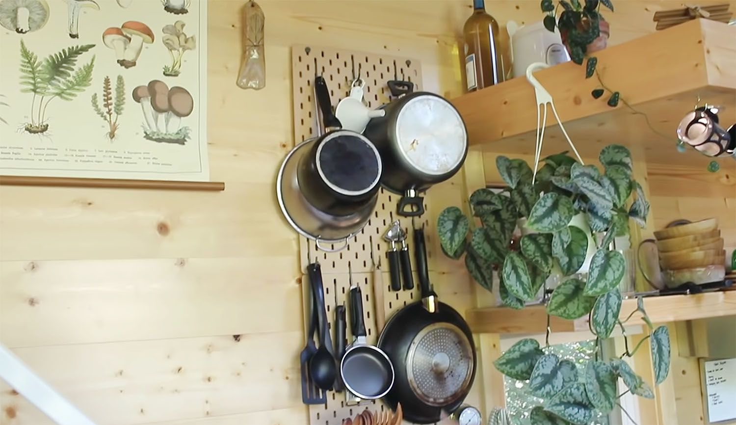 tiny house with houseplants kitchen pegboard