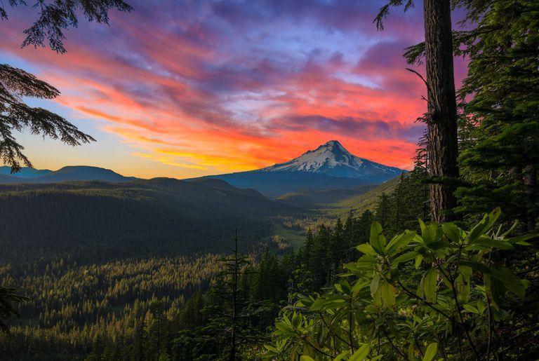 Beautiful Vista of Mount Hood in Oregon, USA