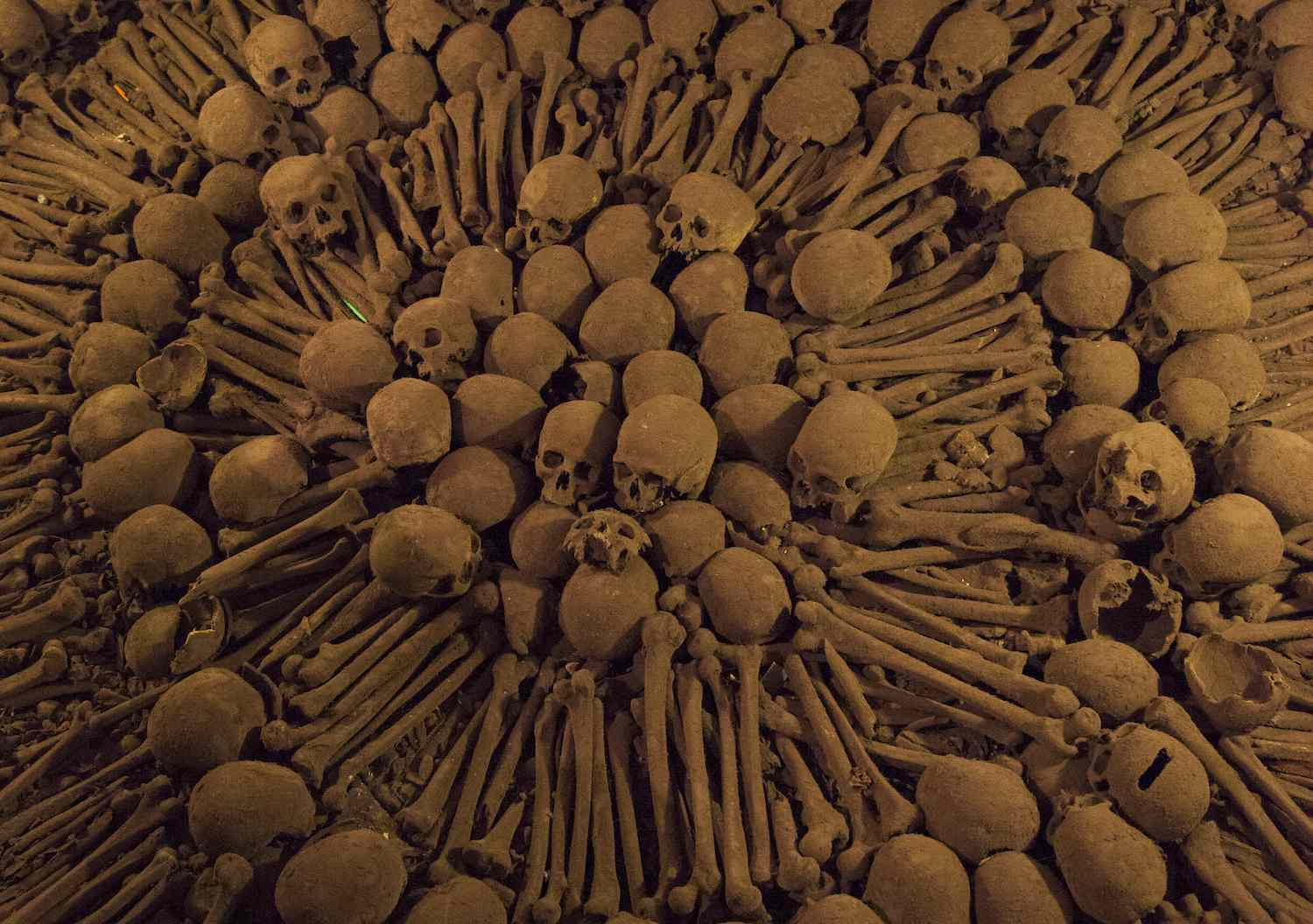 Bones and skulls laid out in an intricate design at Catacombs of Lima at the Monastery of San Francisco