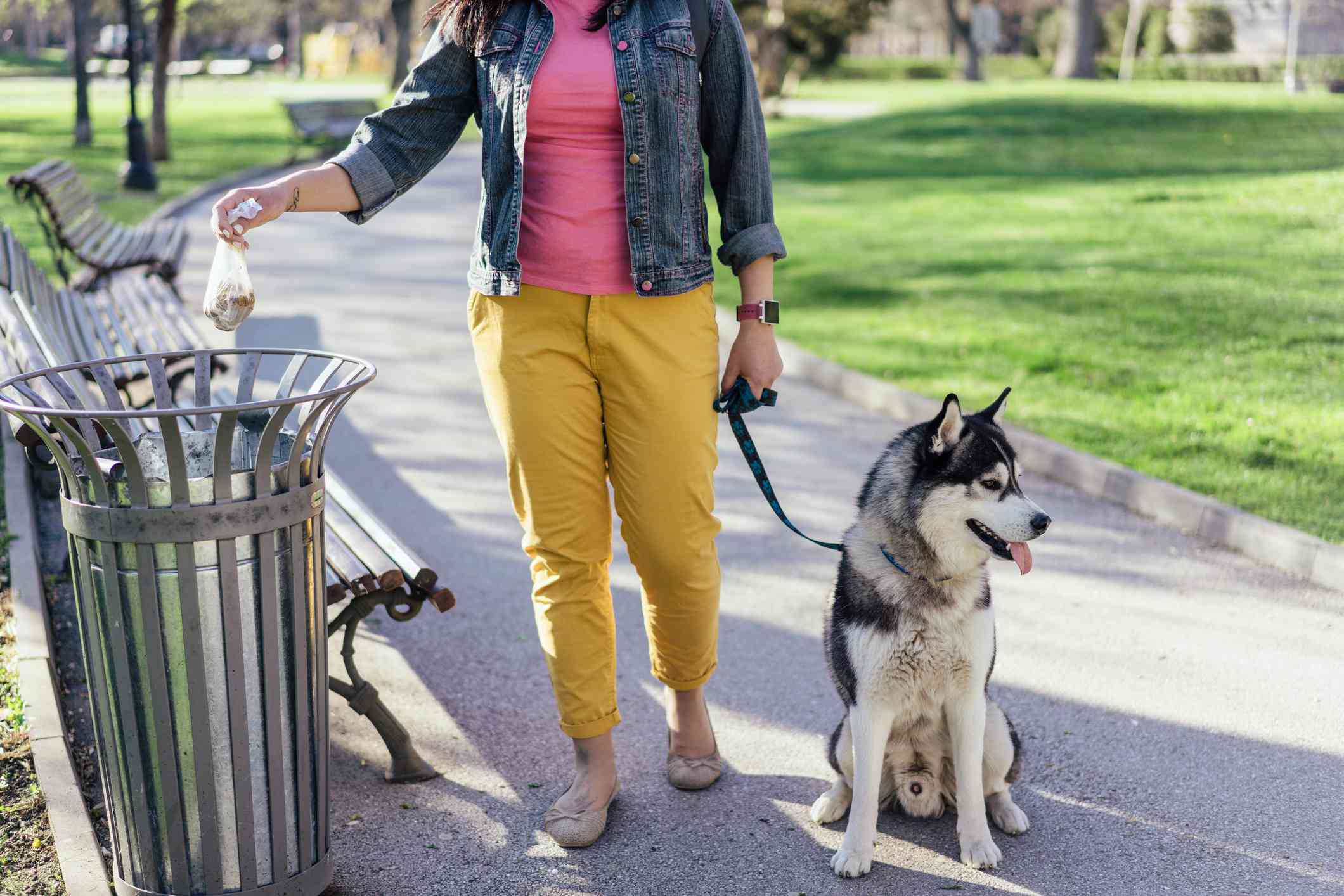 Person with dog, throwing a bag of poop into trash