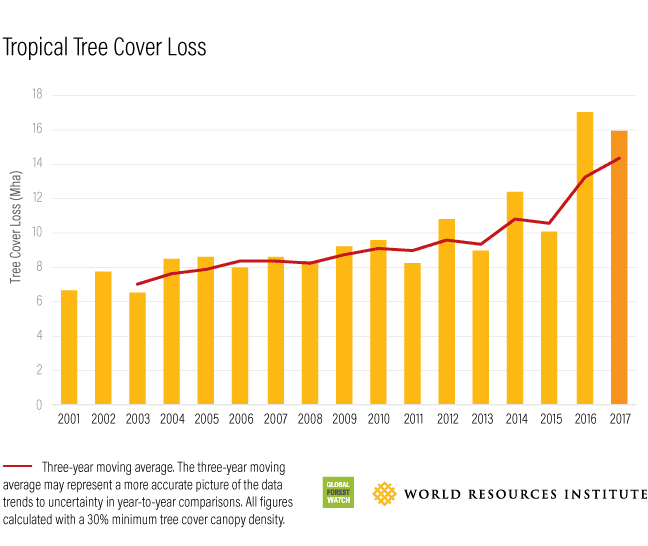 bar graph of tropical tree-cover loss by year