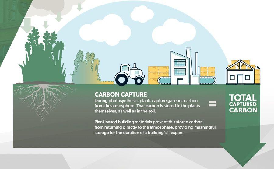 Diagram showing carbon capture