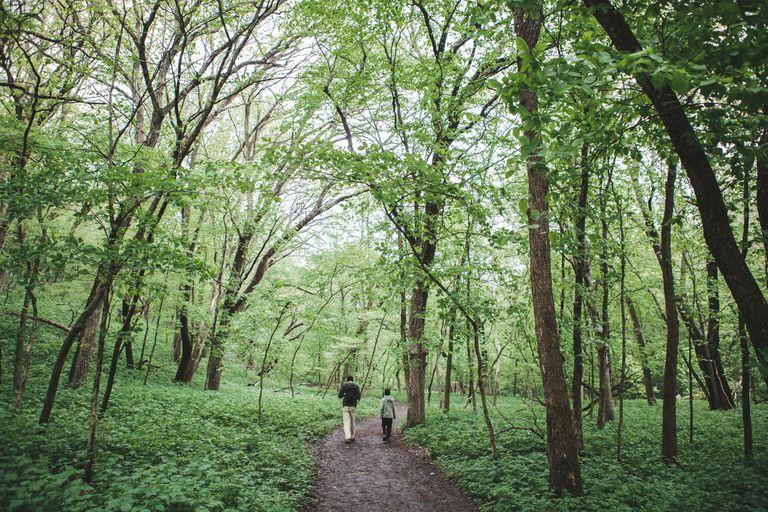 Man and boy walking down a hiking trail