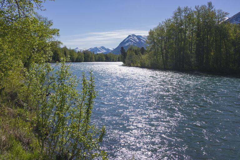 The sun glistens off the surface of Kenai River in Alaska