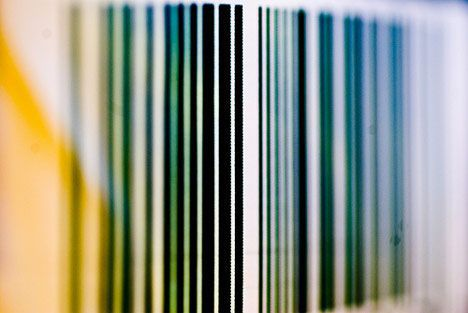 barcode with colors photo