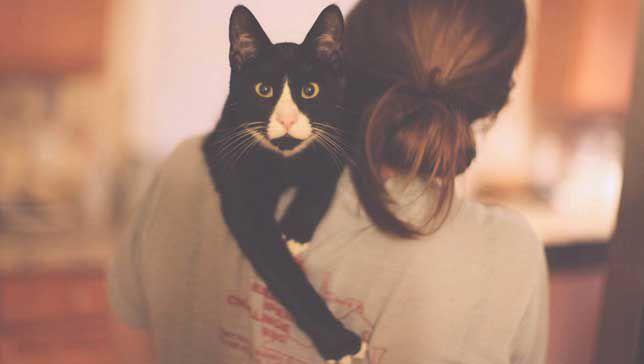 hugging a black cat