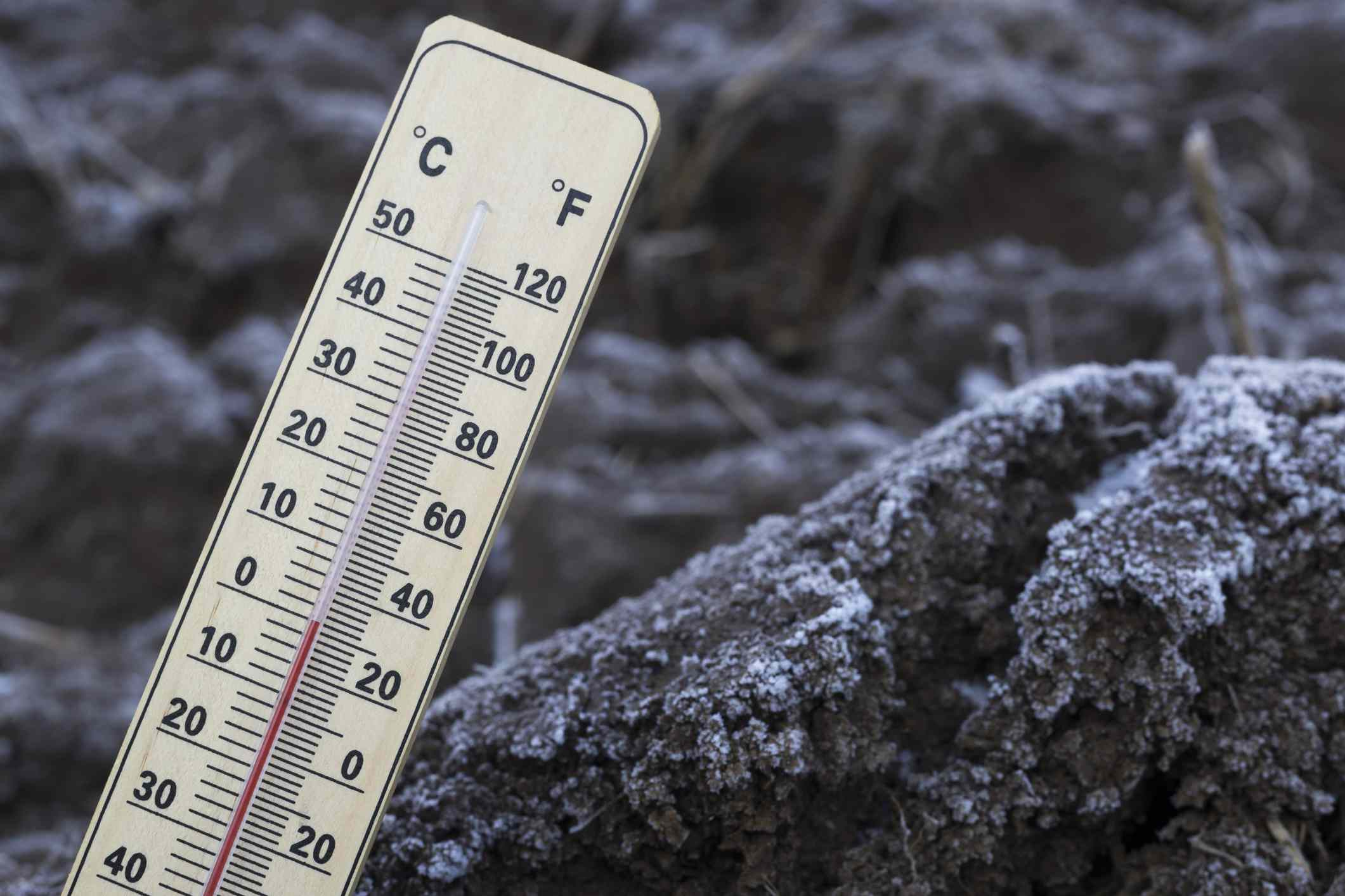 A thermometer measures the temp of frozen soil.