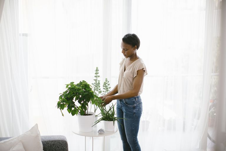Woman arranging plants at home