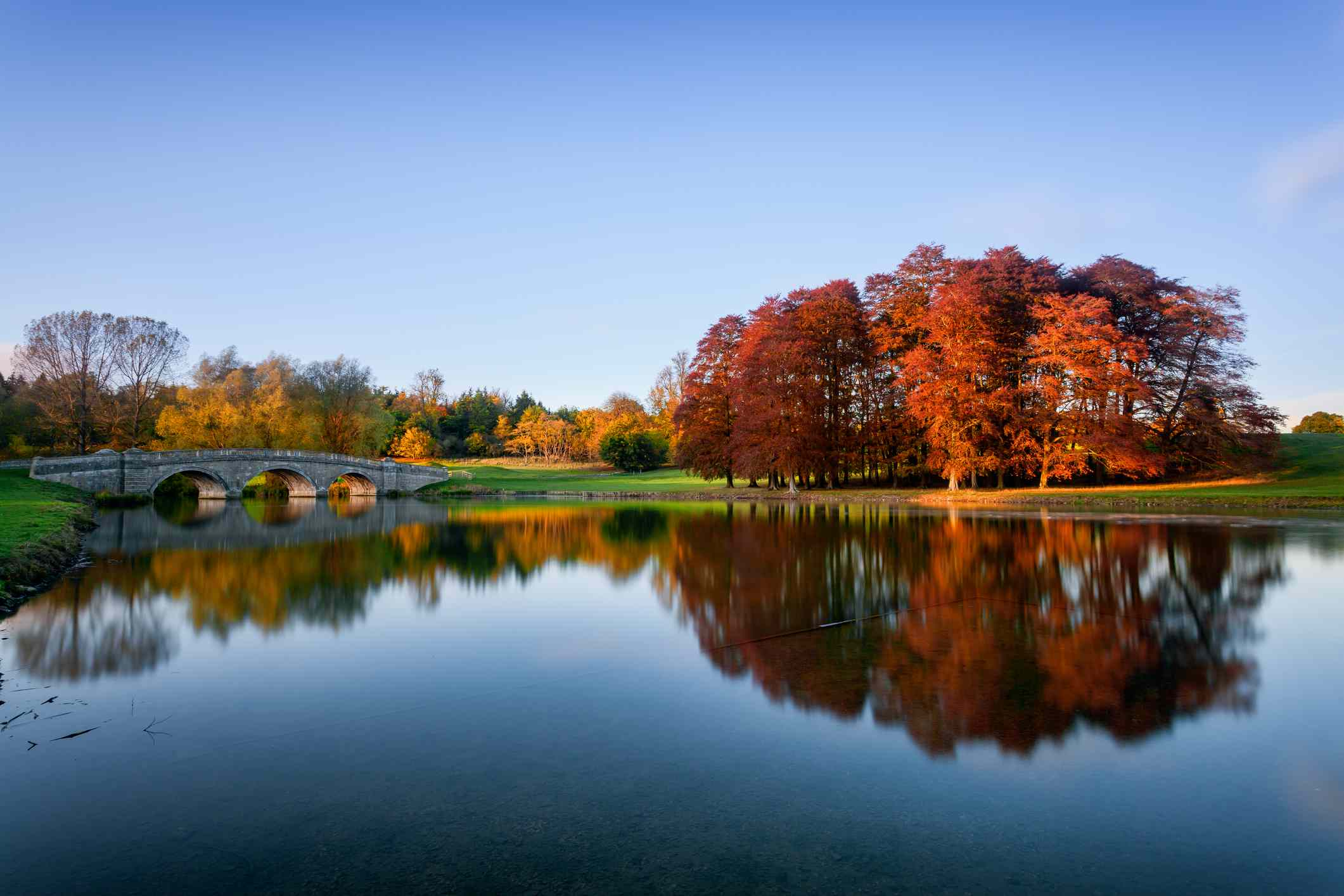 A clear, blue sky above large autumn trees in shades of orange and red reflected in the calm waters of the River Glyme, as it runs through the Blenheim Park Estate in Woodstock, Oxfordshire