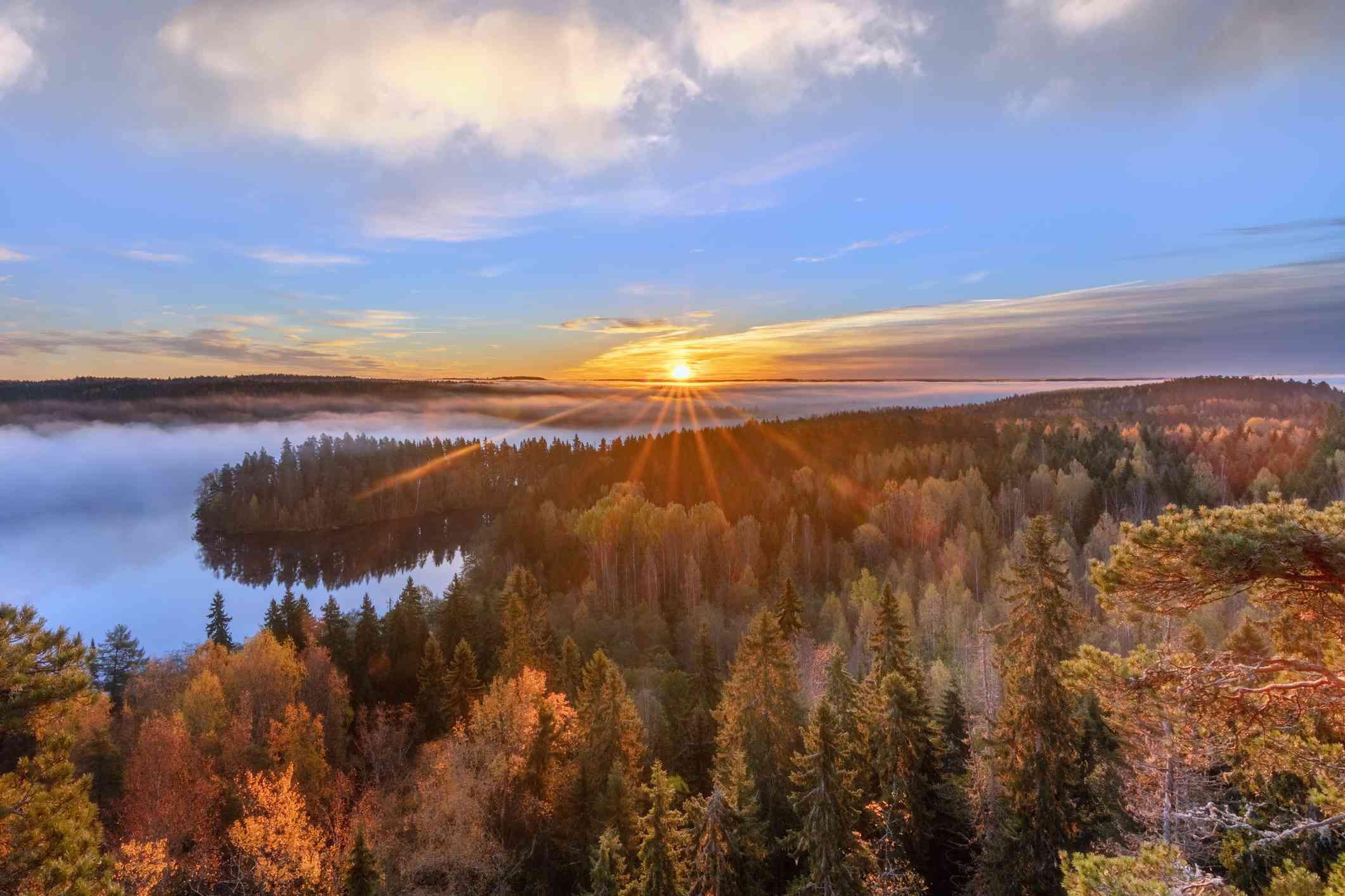Aerial view of sun rays shining through a forest of autumn trees next to a lake at sunrise with blue skies and white clouds above in Aulanko, Hämeenlinna, Finland.