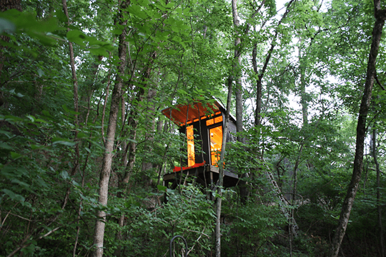 Chic Tennessee Treehouse Hideaway construido por $ 1,500