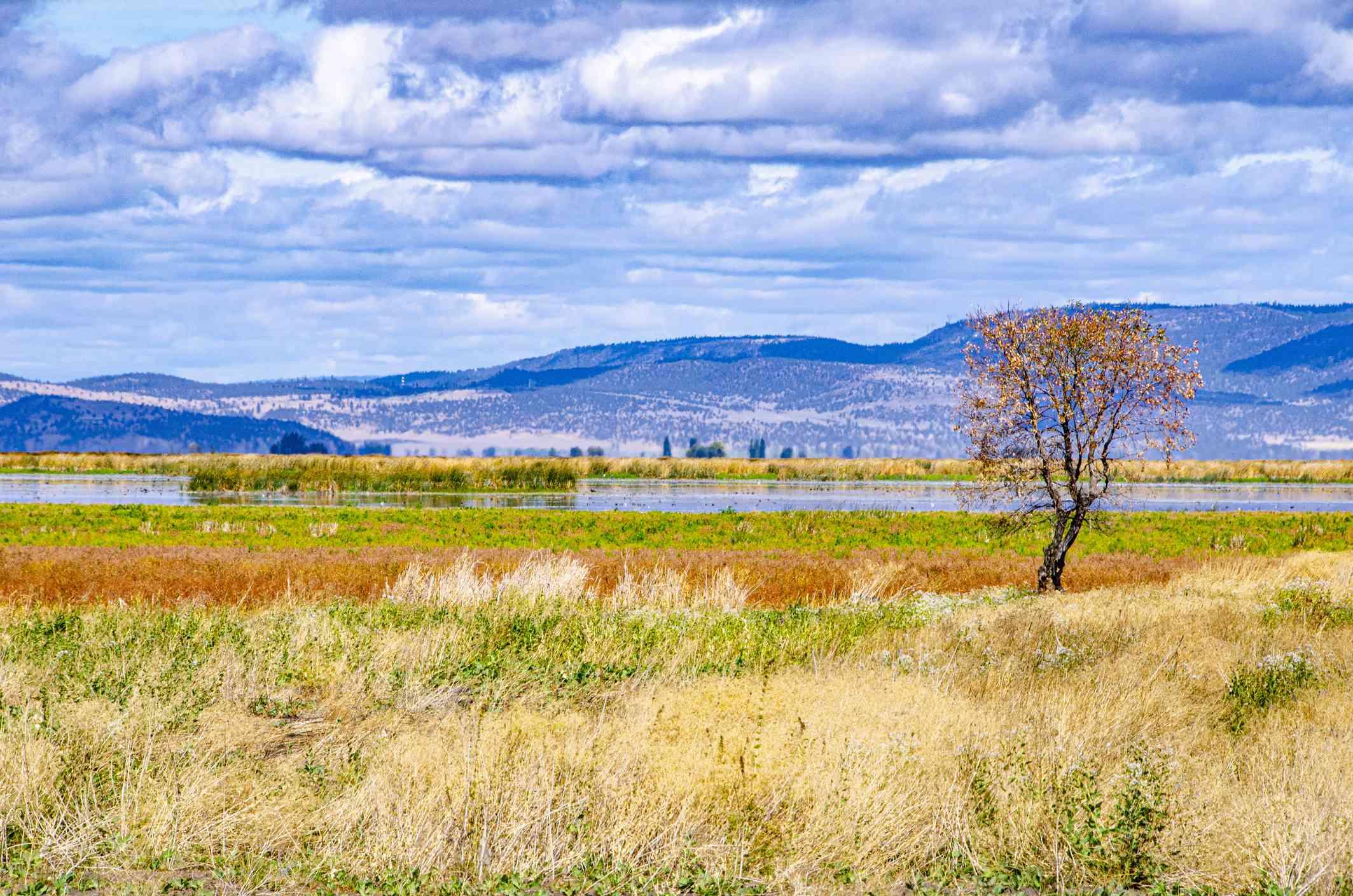 Tule Lake National Wildlife Refuge along California State Route 139