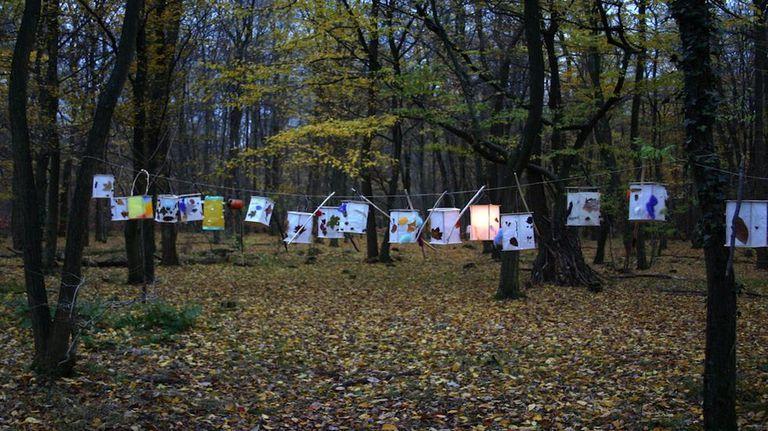 ¿Enviaría a su hijo a la guardería en el bosque?