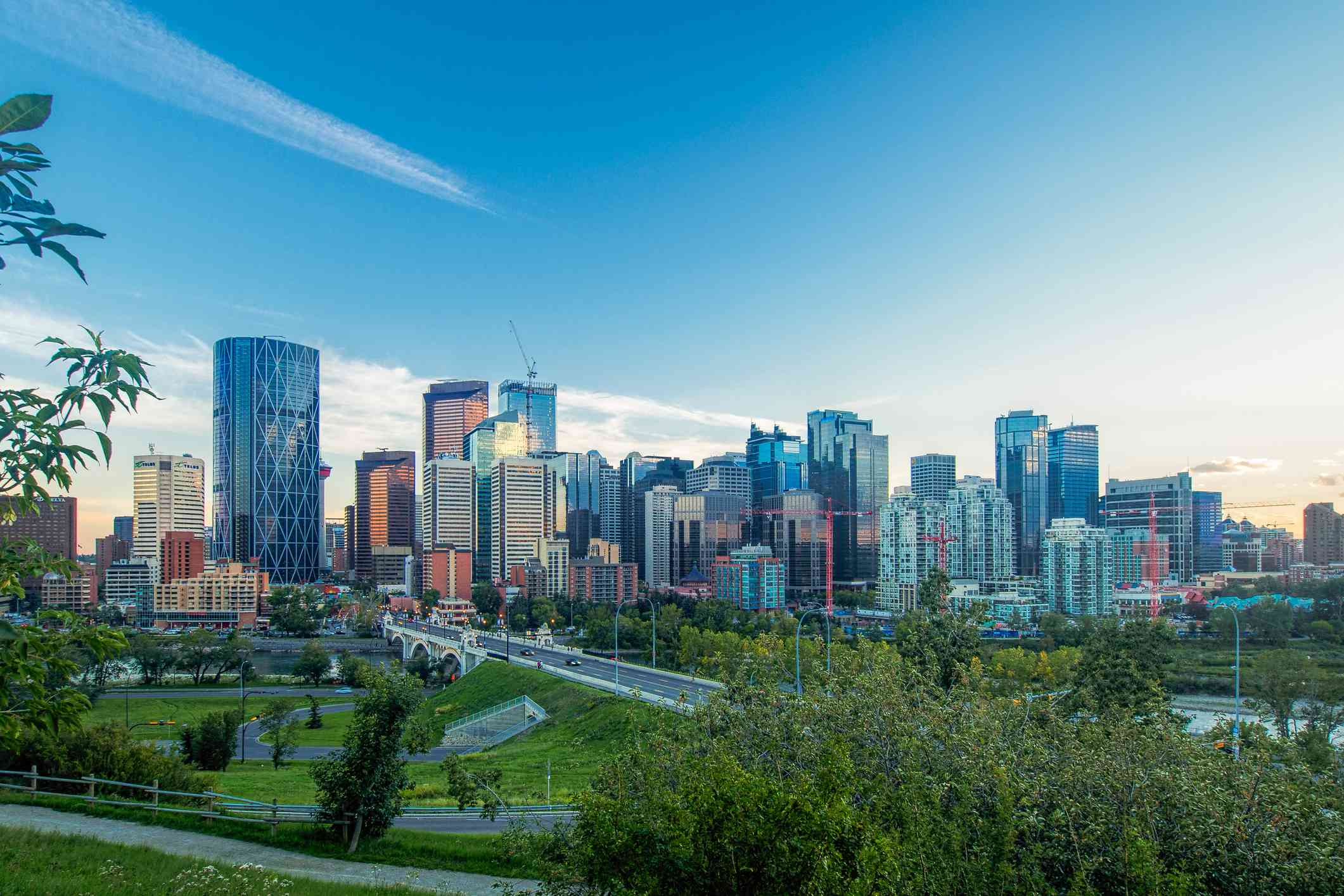 High rise buildings of Calgary in the distance with wide, sloping green area in the foreground, under a blue sky on a sunny day