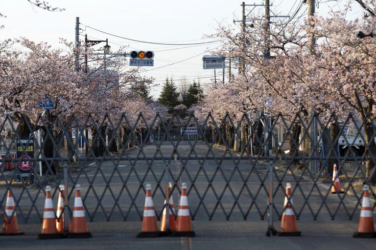 Las plantas eólicas y solares se elevan a la sombra de la fusión nuclear de Fukushima en Japón