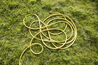 Yellow garden hose on the lawn