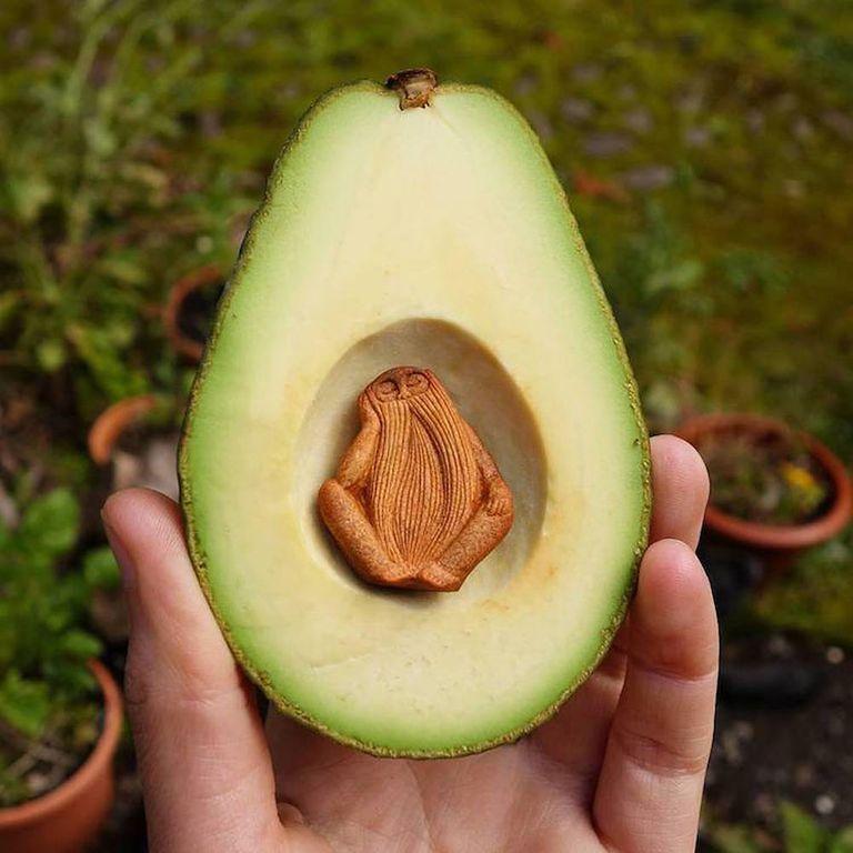 Deliciosas criaturas del bosque son talladas con semillas de aguacate