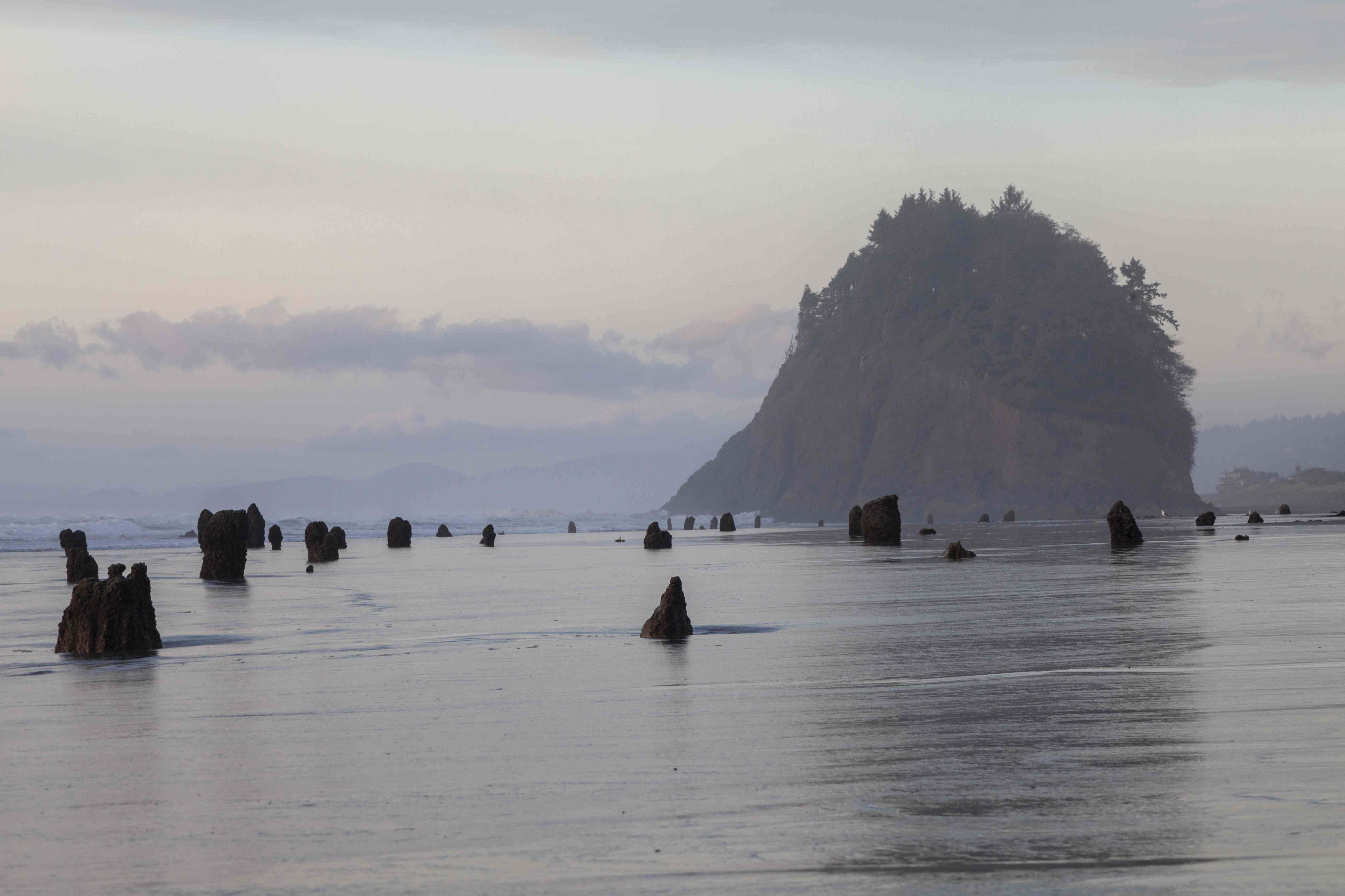 Ocean on the Oregon coast dotted with barren stumps