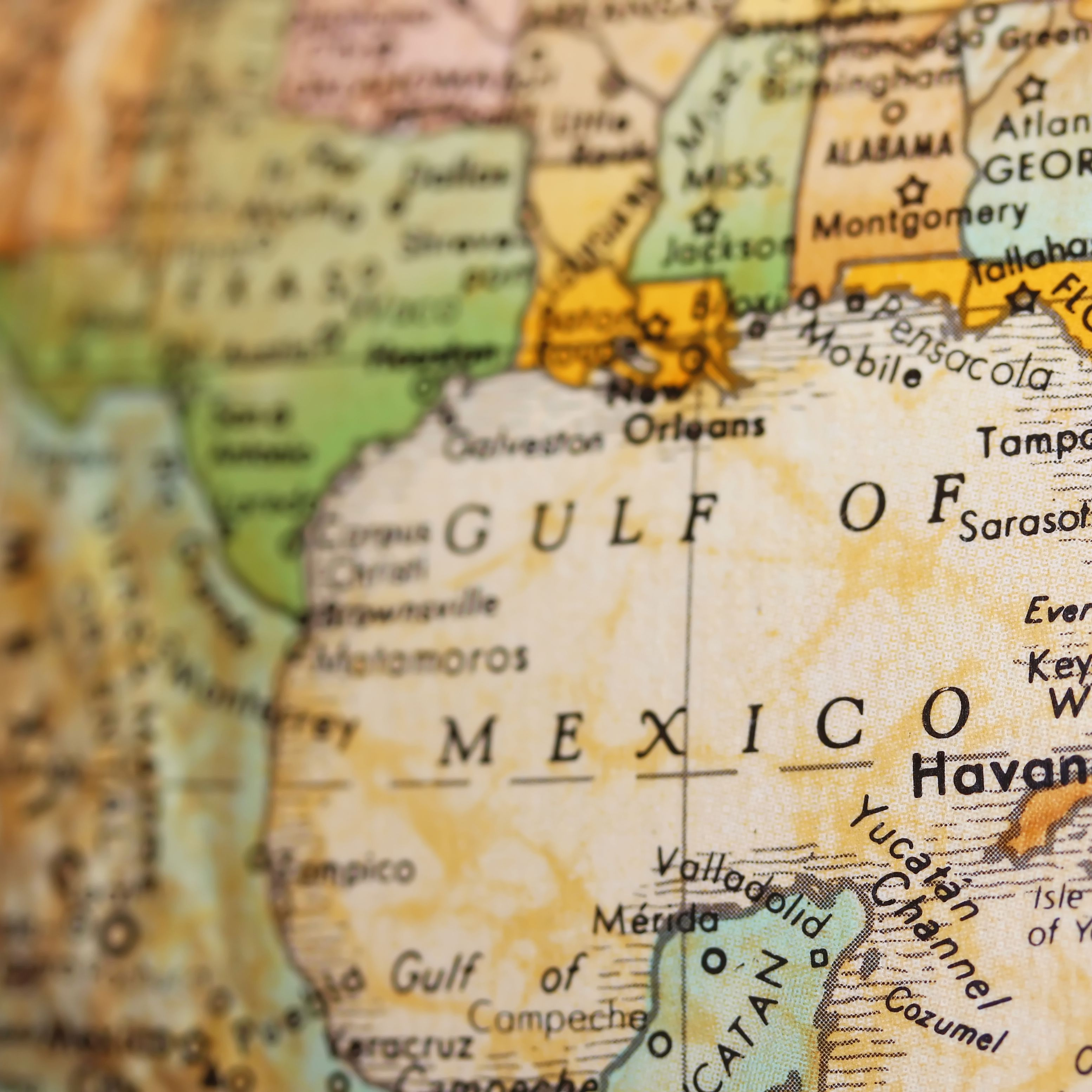 Picture of: 48 Facts You Should Know About The Gulf Of Mexico From Sunken Ships To Ancient Corals